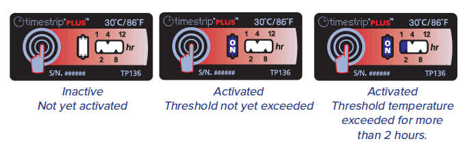 Timestrip PLUS 30C TP136 progress